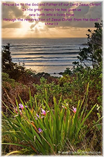 Cape Sebastion (photo by Howard J. Blichfeldt)