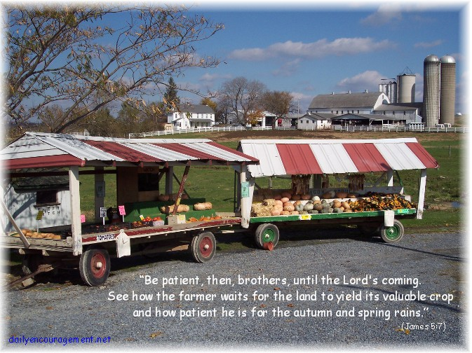 Photo of produce stand with Scripture verse