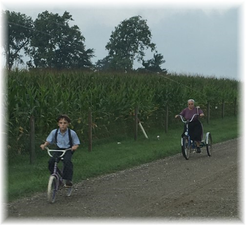 Amish on bikes in Indiana  8/4/16