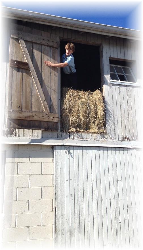 Amish boy in Lancaster County hay loft 11/8/14
