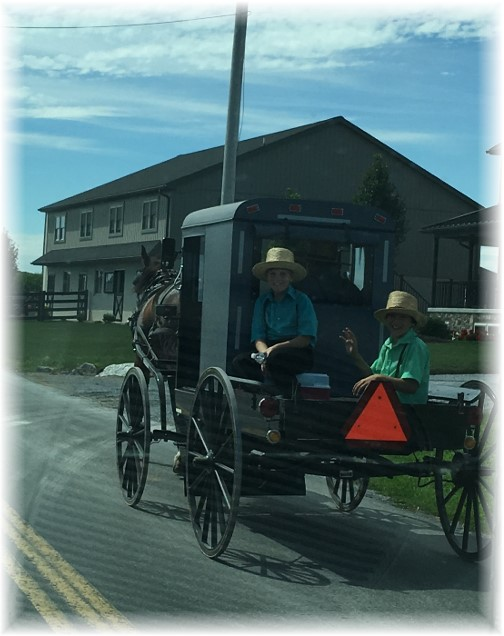 Amish boys riding in buggie pickup 8/24/16