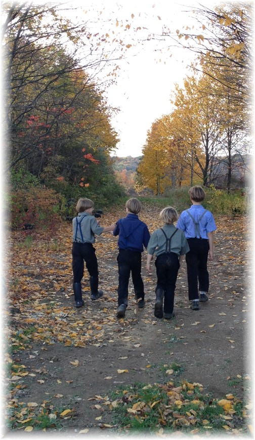 Amish boys on hike 10/18/14
