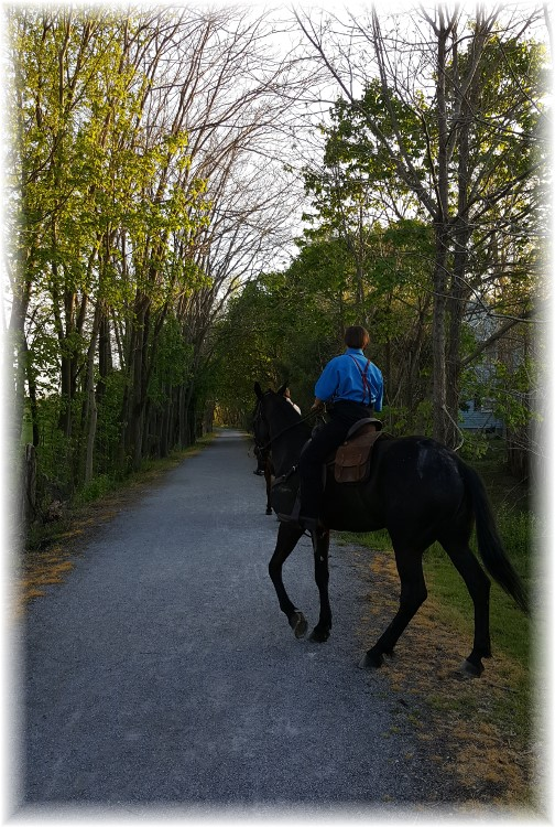 Amish boys riding horses on Junction Trail