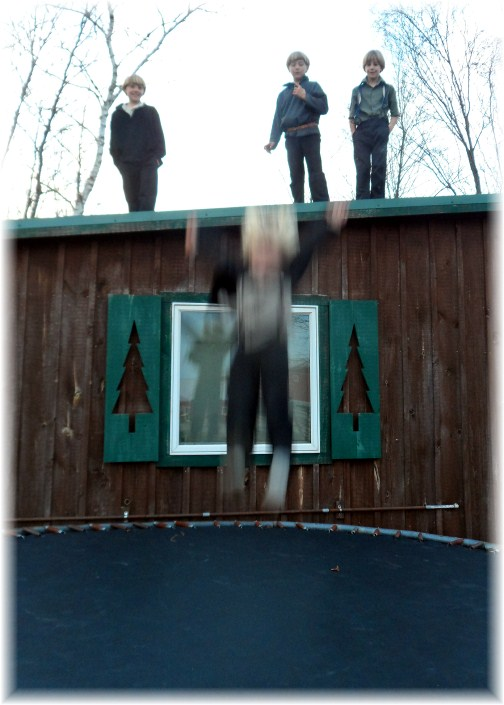 Amish boys playing on trampoline