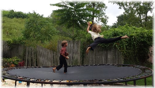 Amish boys jumping on trampoline (Lee Smucker)