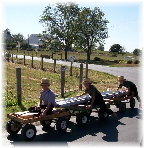 Amish boys on wagons