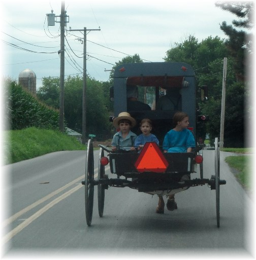 Amish buggie with children in Lancaster County PA 7/25/13