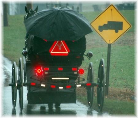 Amish buggy in rain
