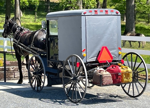 Amish buggy with gas cans