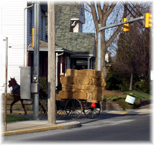 Amish buggy with hay load