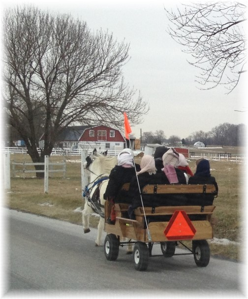 Amish girls in cart 1/14/15