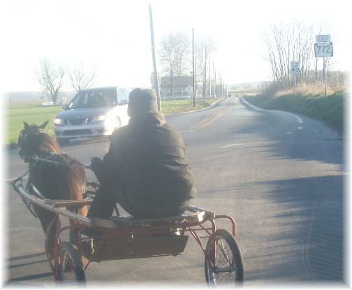 Amish cart on Newport Road, Lancaster County, PA 12/1/11