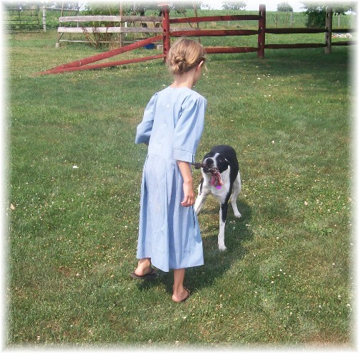 Amish child playing with Molly 7/12/12