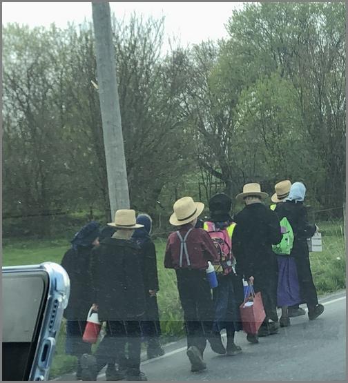 Amish children walking home from school 4/18/19