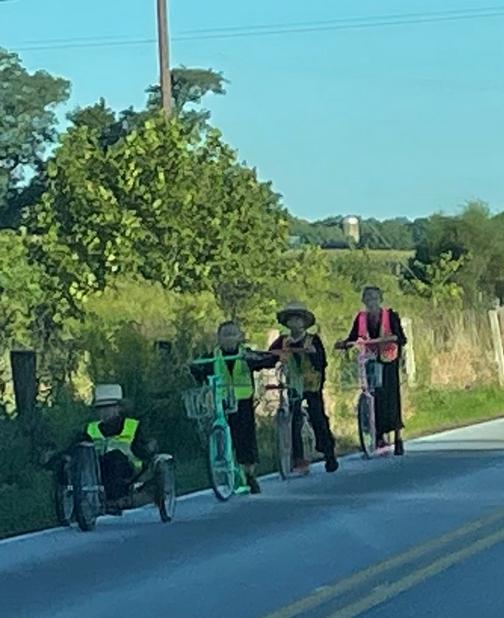 Amish children going to school