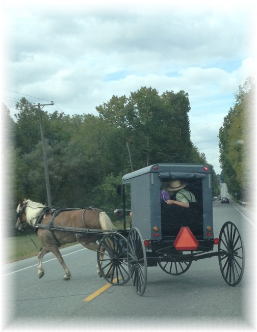 Amish buggy on Rt 222 9/26/15