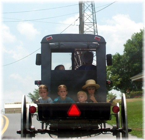 Amish children in back of buggy pickup