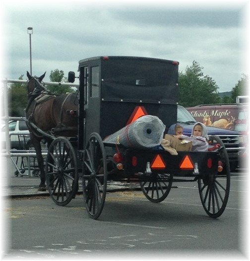 Amish children in buggy pickup 6/3/15
