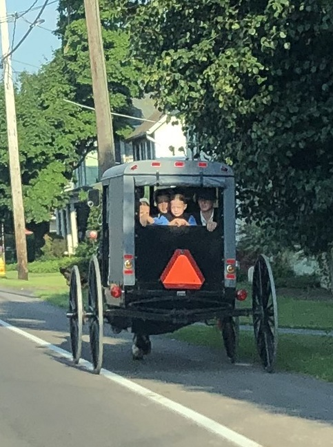 Amish children looking out back of buggy 07-21-19 (Photo by Ester)