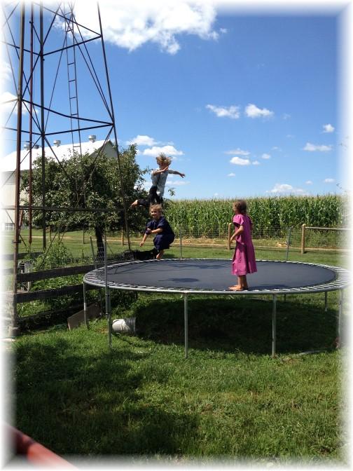 Amish children playing on trampoline 7/31/15