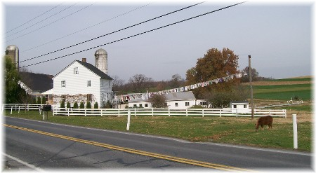 Photo of Amish clothesline
