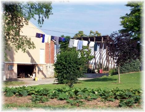 Kraybill Church Road clothesline 7/20/10