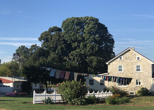 Amish home and clothesline 9/19/19 (Click to enlarge)