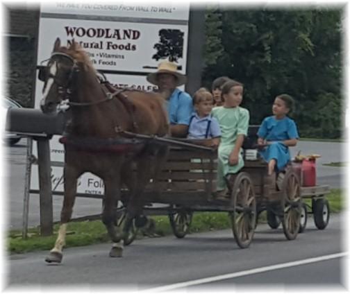 Amish conveyance 7/15/17