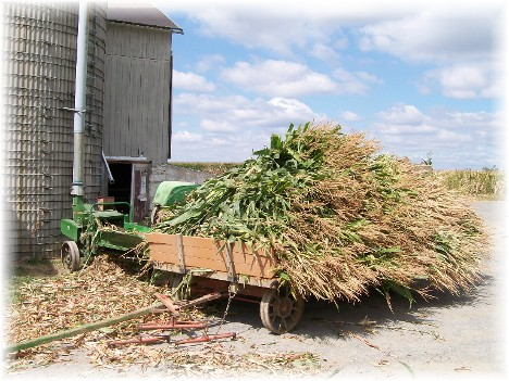 Amish alfalfa harvest, Lancaster County, PA