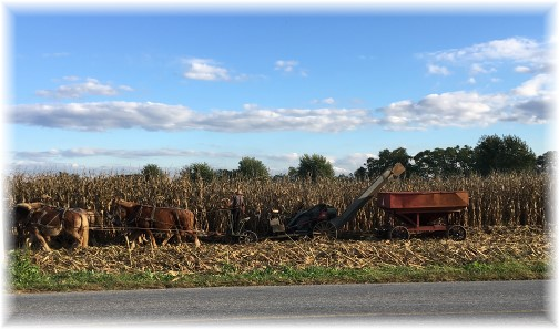 Lancaster County corn harvest 10/13/16
