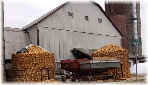 Corn stored on Amish farm near New Holland, PA 12/4/13