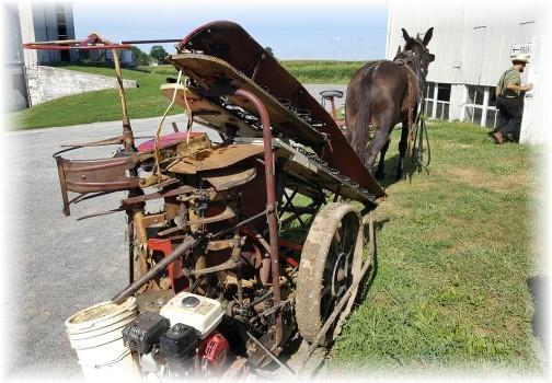 Amish corn picker 9/2/16