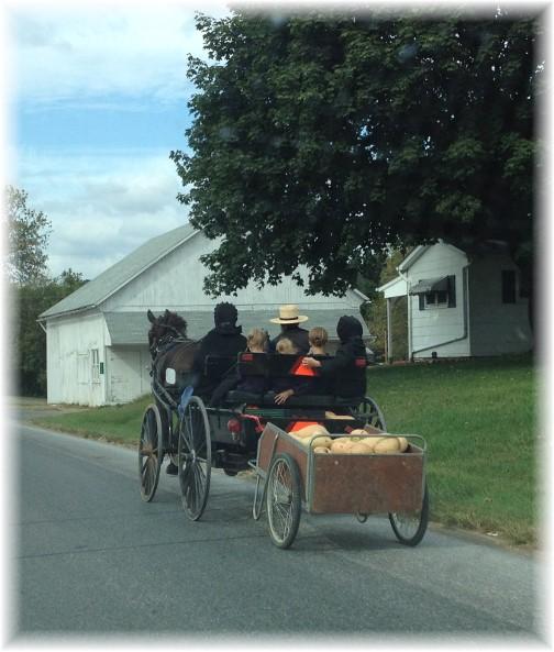 Amish family pulling garden cart