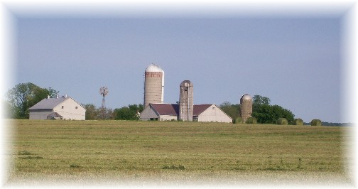 Amish farm after alfalfa harvest 5/11/11