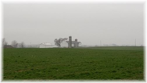 Amish farm on foggy day 12/25/15