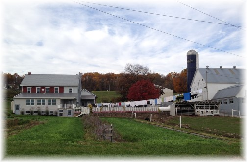 Amish Farm on Harvest Road 11/2/15