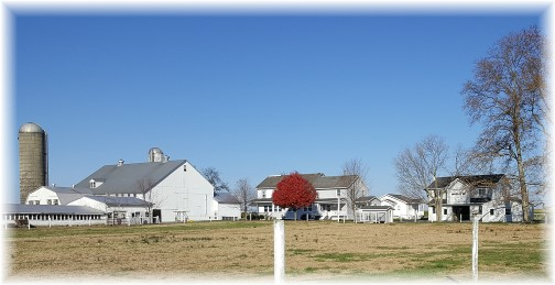 Amish farm 11/17/16 (Click to enlarge)
