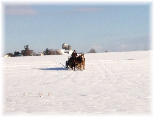 Amish farmer on horse-drawn sleigh 12/12/13