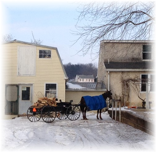 Firewood wagon on Amish farm in southern Lancaster County PA 2/27/15