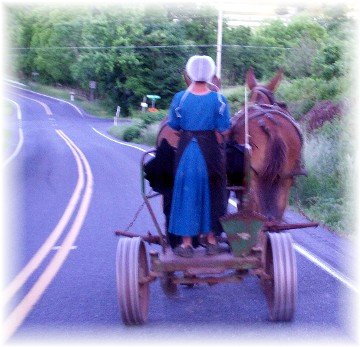 Amish girl with team on E-town Road 6/4/11