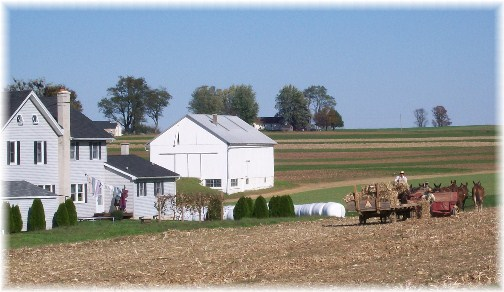 Amish hay harvest in Lancaster County, PA 10/25/11