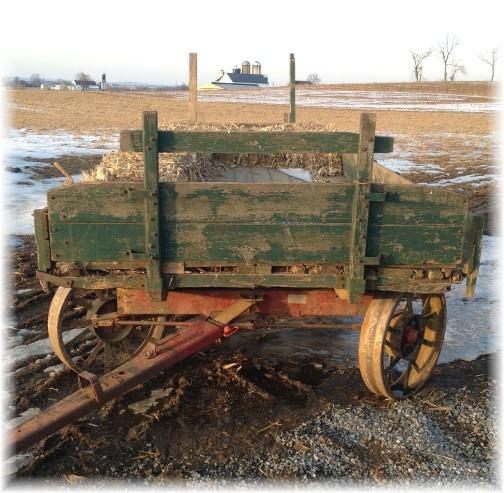 Amish hay wagon 2/25/15