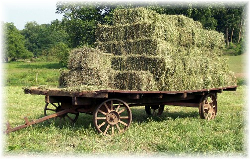 Amish hay wagon in Lancaster County PA