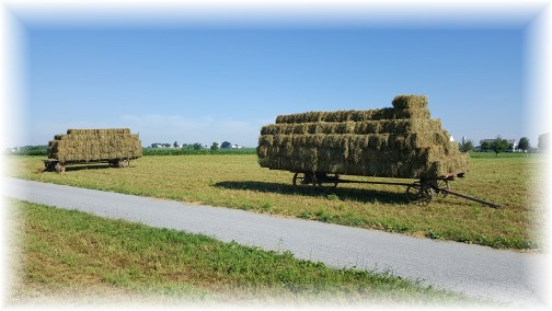 Amish hay wagons, Lancaster County, PA 6/30/16