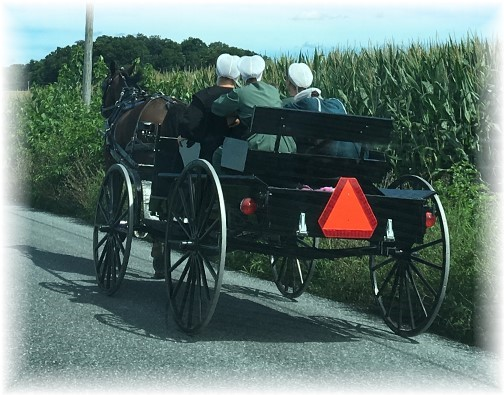 Amish ladies in cart 8/17/16