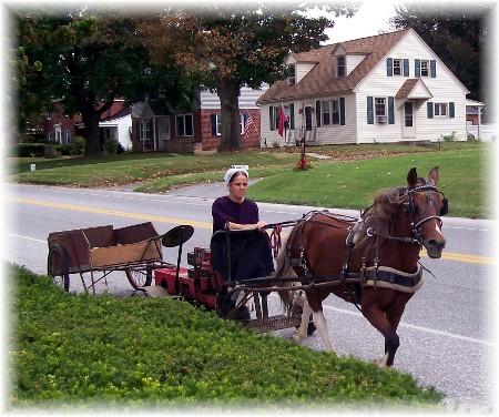 Amish mini train!