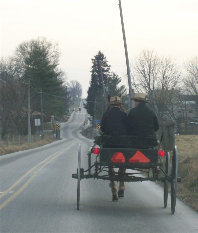 Amish open buggy