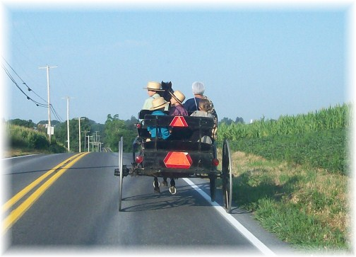Amish open cart