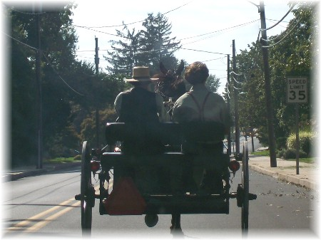 Amish open cart photo