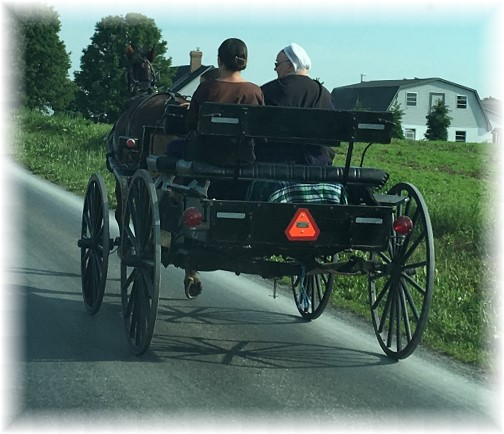 Amish open cart 5/18/17